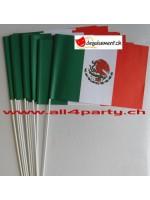 10 drapeaux Mexique 14x21cm