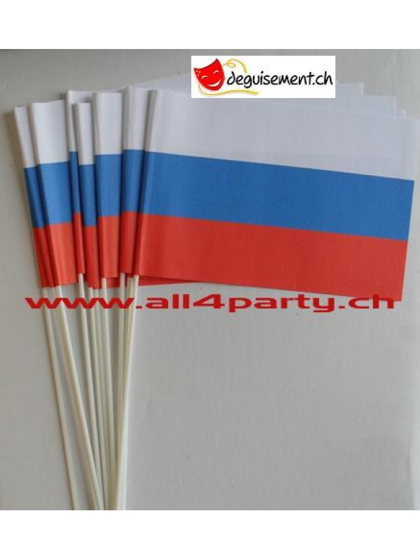 10 drapeaux Slovaquie14x21cm