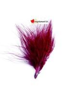 20 plumes bordeaux