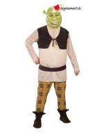 Shrek disguise