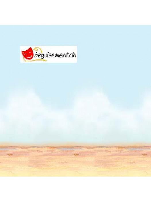 Desert sky & sand Backdrop