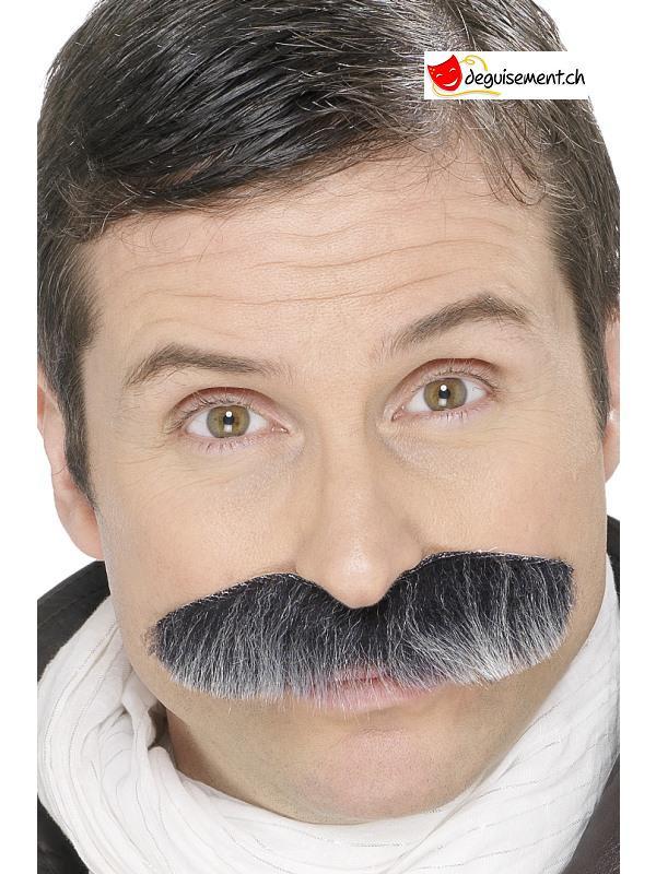 Moustache auto-adhésive grise